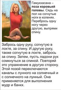 конспект тренировок по хатха-йоге в картинках